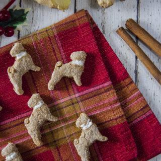 biscotti can di zenzero